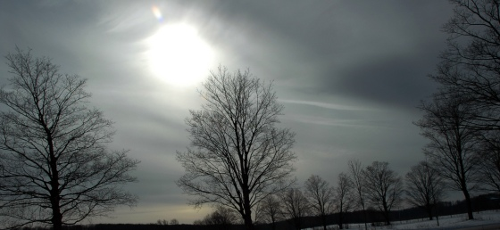 Cold-Sky